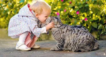 hayvan-yuruyuslerini-taklit-etmek-cocuga-ne-gibi-faydalar-saglar