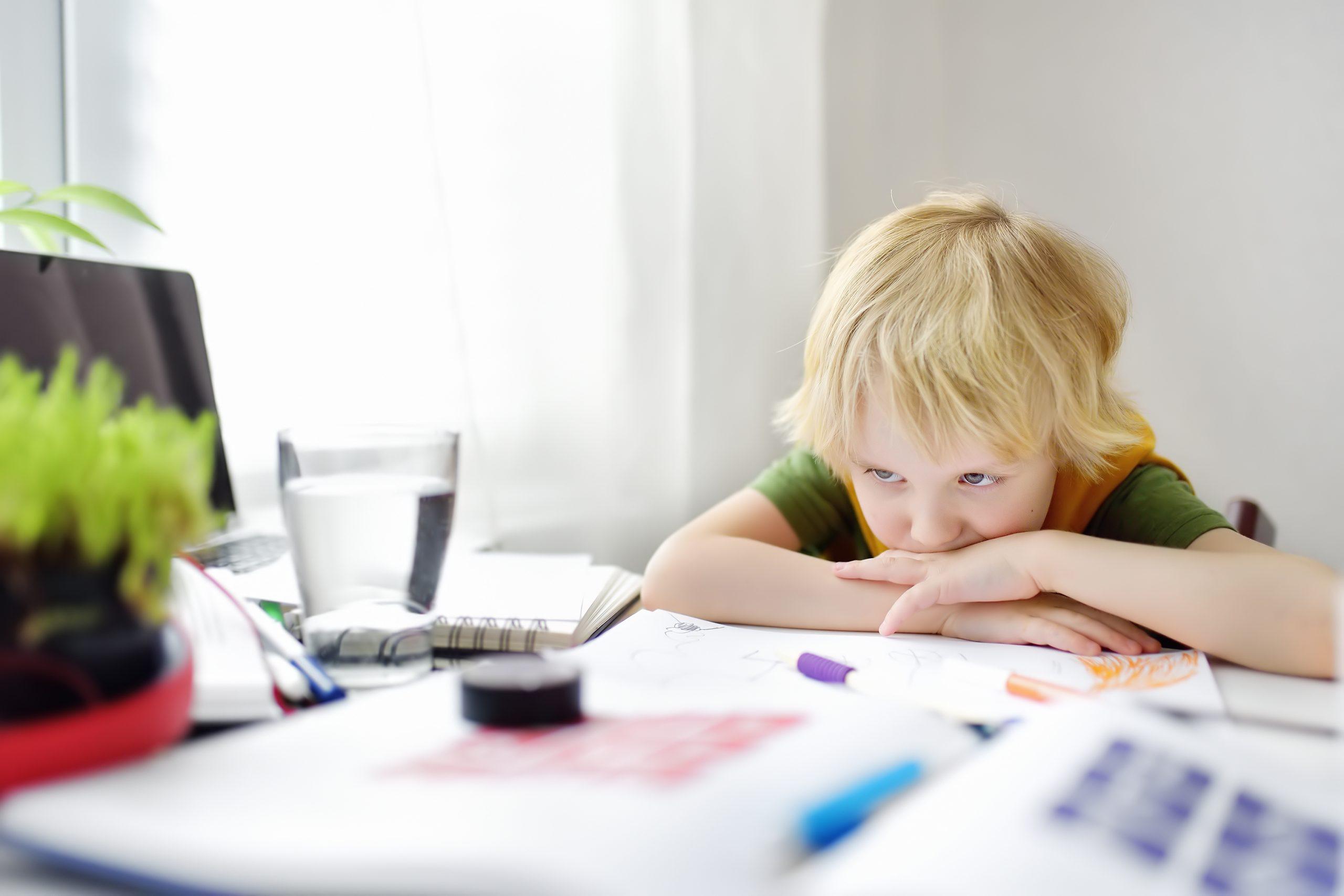 Otizm Spektrum Bozukluğu ve Bu Tanı Grubundaki Bireylerin Ebeveynleri Gözünden Değerlendirme, İLK EVİN - Özel Eğitim ve Rehabilitasyon Merkezi